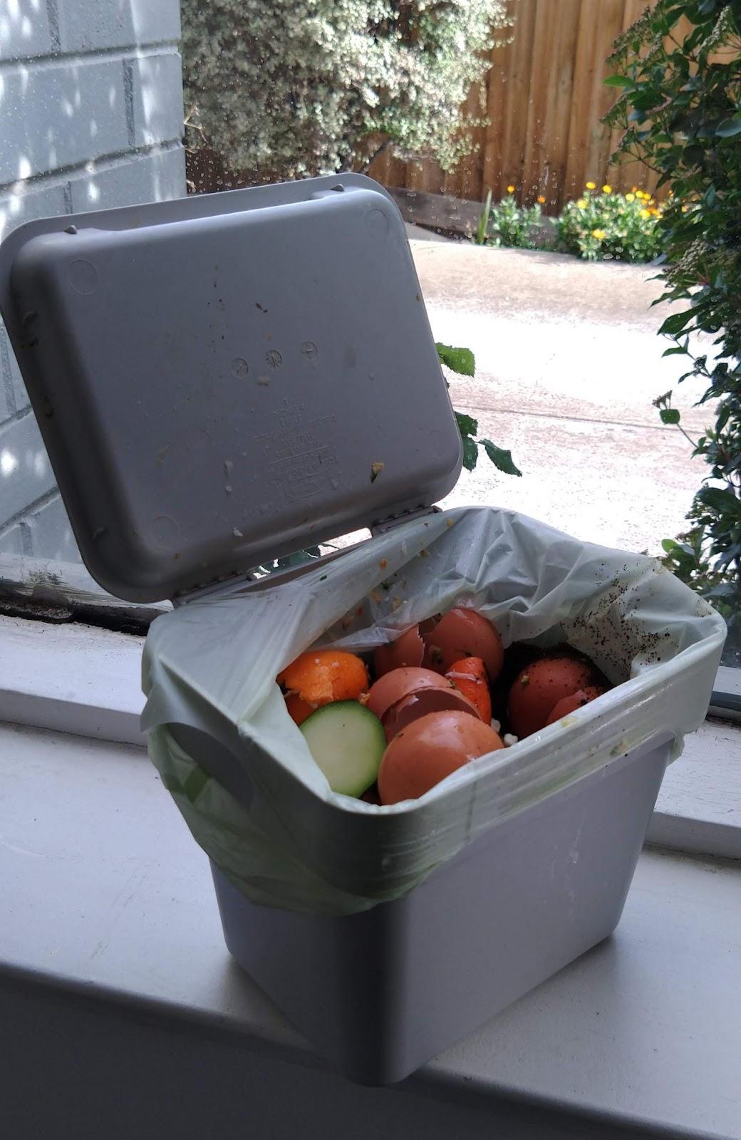 Food waste Caddy - Brunswick Daily