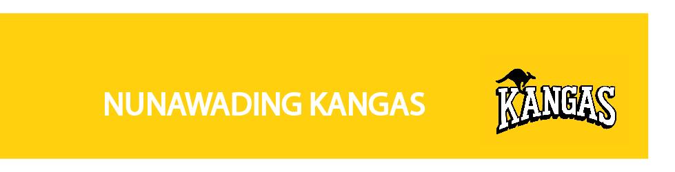 kangas test 2.jpg