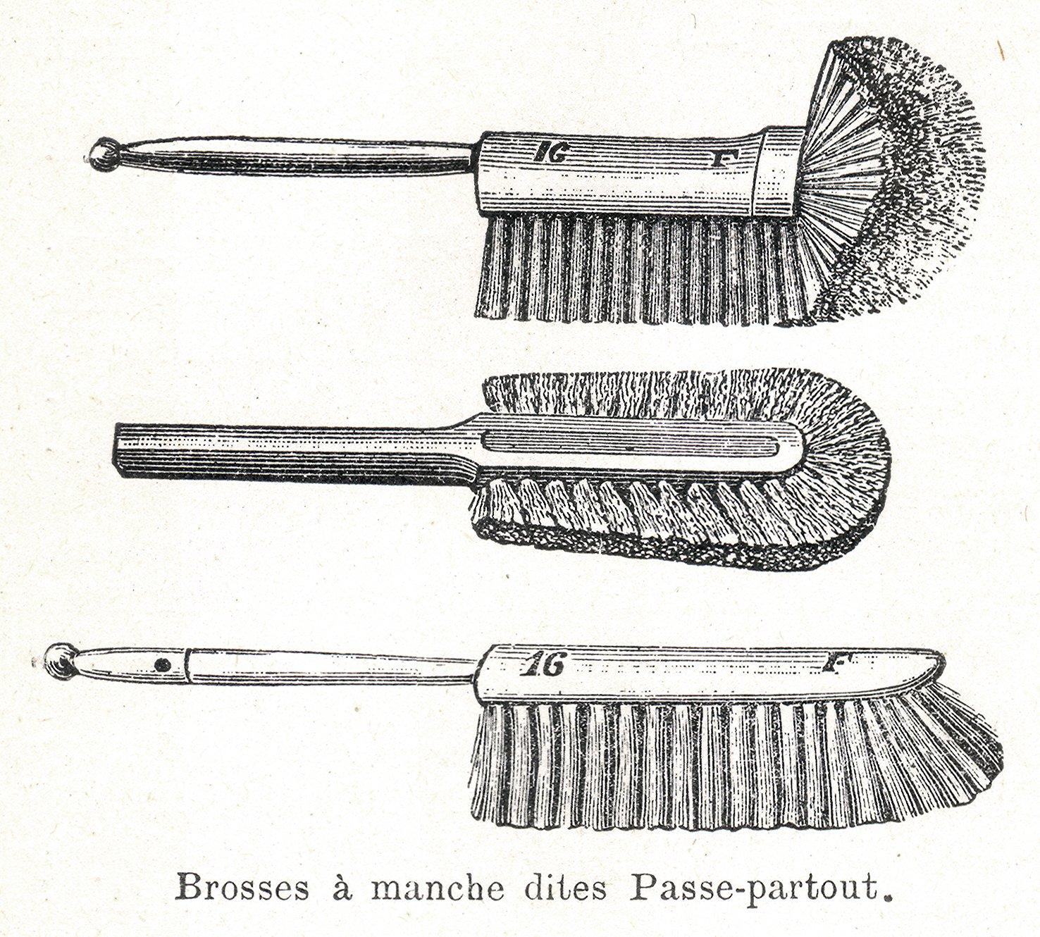 Иллюстрация 1904 года