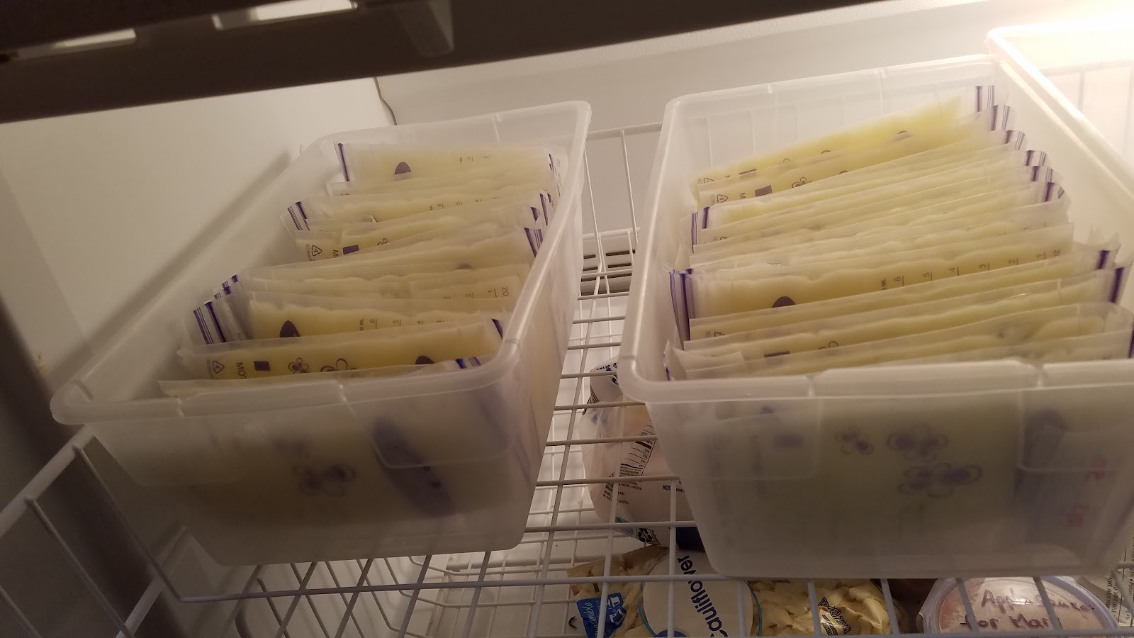 breast milk storage in freezer totes