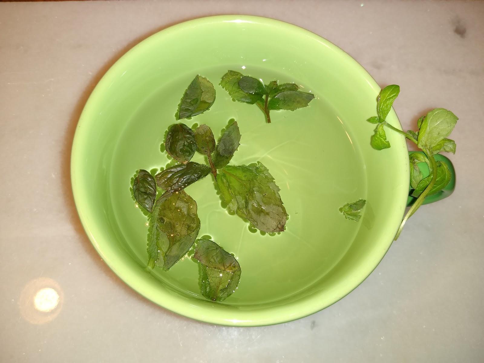 fresh mint tea picture