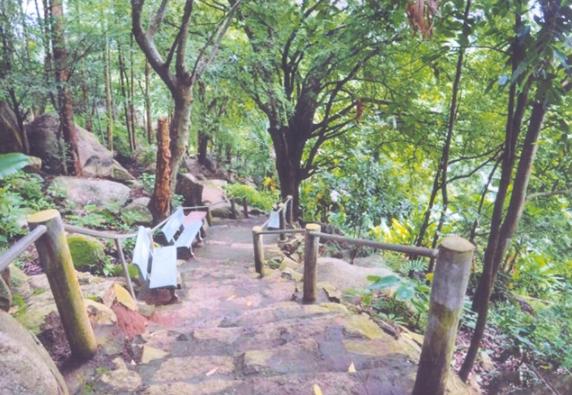 Đường leo núi khám phá tại núi Chứa Chan