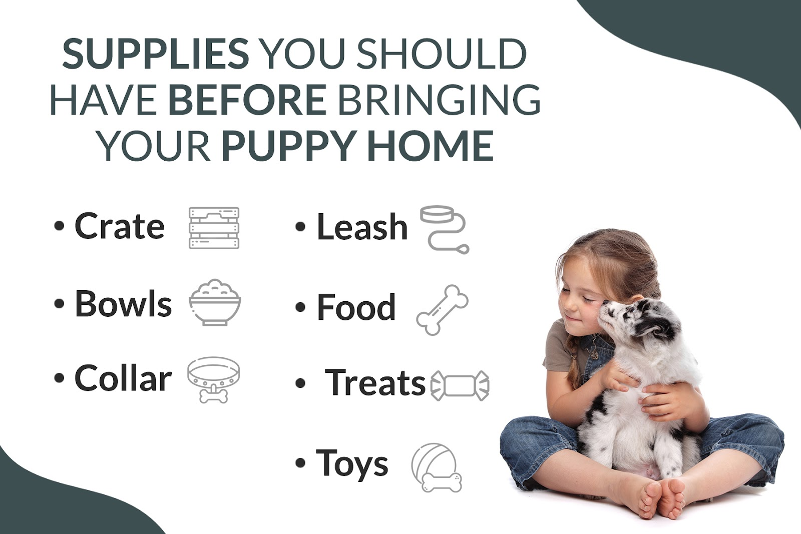 7 Things Every Puppy Owner Needs To Be Doing 2