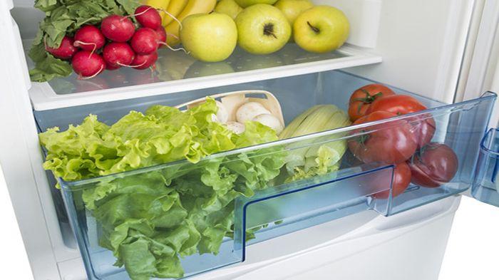 D:\viankitchen\30 - Hưỡng dẫn cách bảo quản rau trong tủ lạnh tươi ngon đúng chuẩn!\huong-dan-cach-bao-quan-rau-trong-tu-lanh-tuoi-ngon-dung-chuan-1.jpg