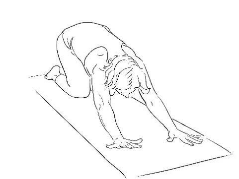 Digestion and movement