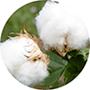 ¿Por qué las fundas de las Almohadas Flex son de algodón?