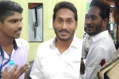 jagan-attack-ysrcp
