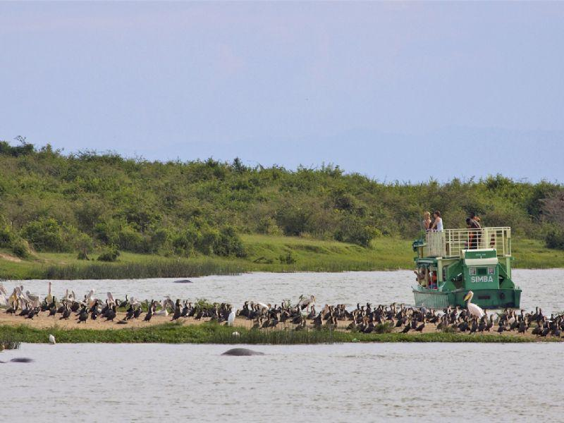 Image result for boat cruise on the kazinga channel