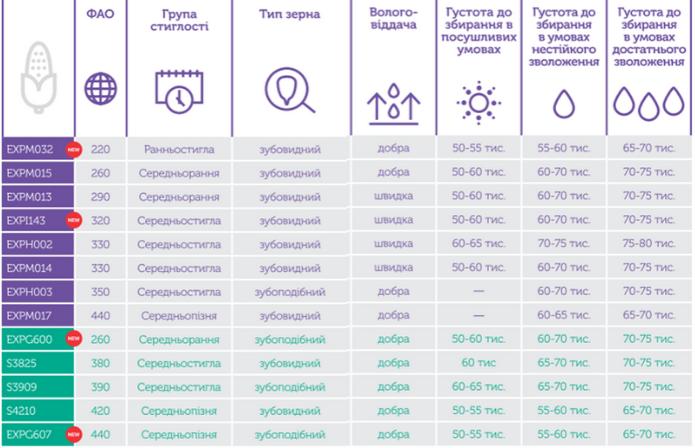 Урожай 2020. Особливості насіннєвої генетики для українських полів фото 2 Universeed