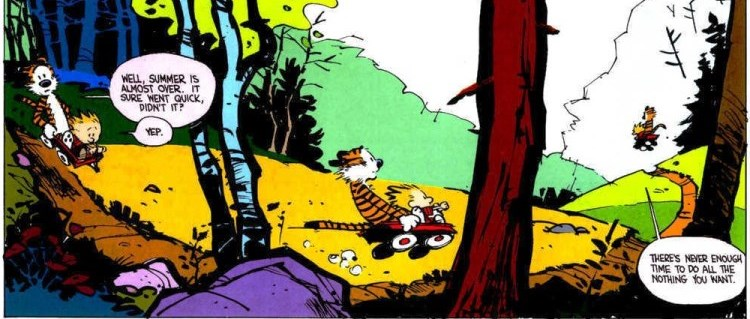 Calvin and Hobbs: Well, Summer is almost over. It sure went quick, didn't it? Yep.  There's never enough time to do all the nothing you want.