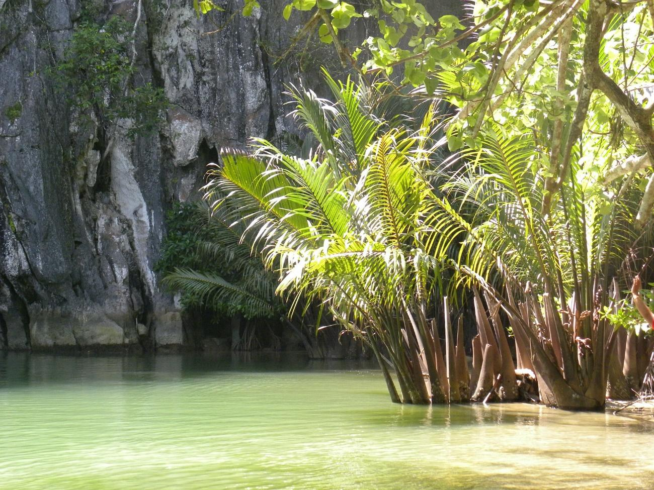 Green canyon west java