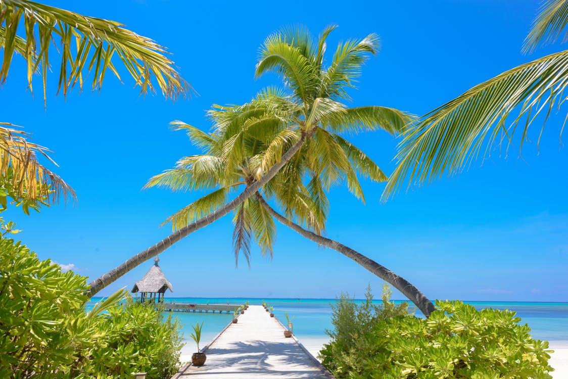 Photo of Scenic Beach Resort