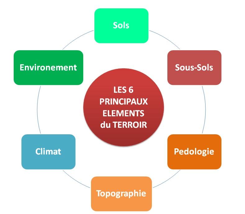 Les 6 Principaux elements du terroir by LeDomduVin (v3).jpg