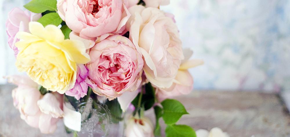 Почему цветы стоит покупать в ГБЦ?