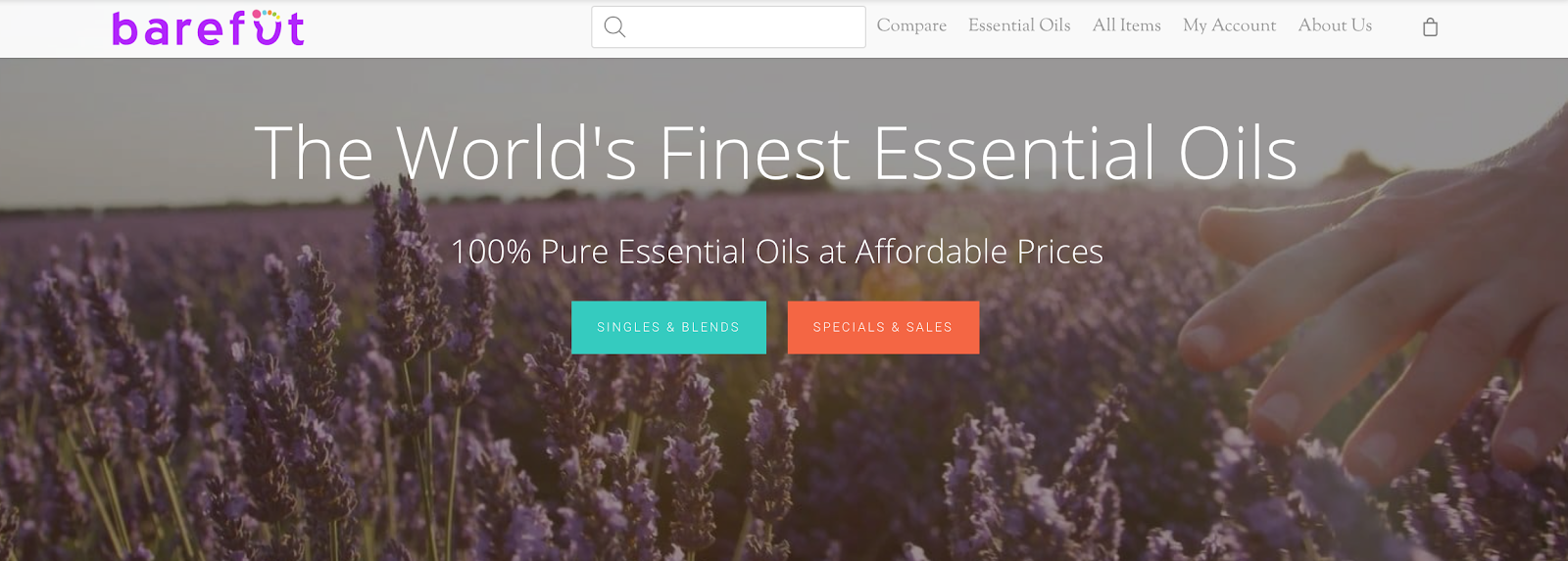 Best Essential Oils Affiliate Programs How to Make Money With Essential Oils Barefut