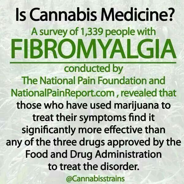 Fibromyalgia and Cannabis