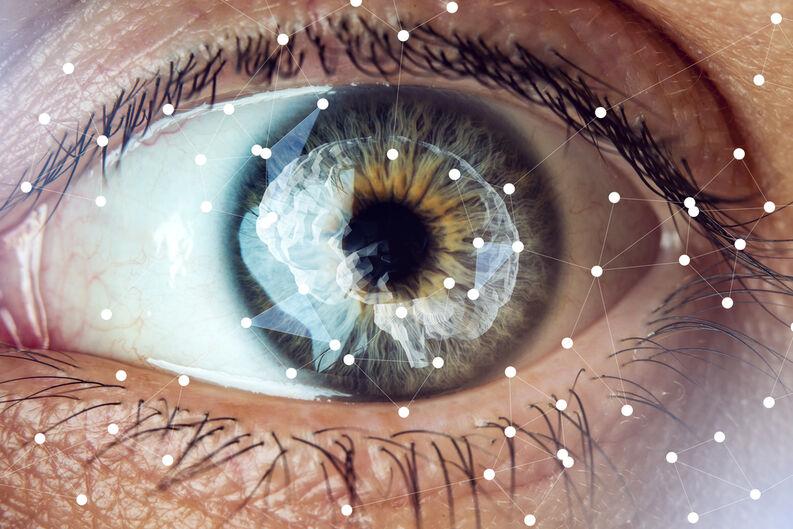 ojo cerebro puntos conexion
