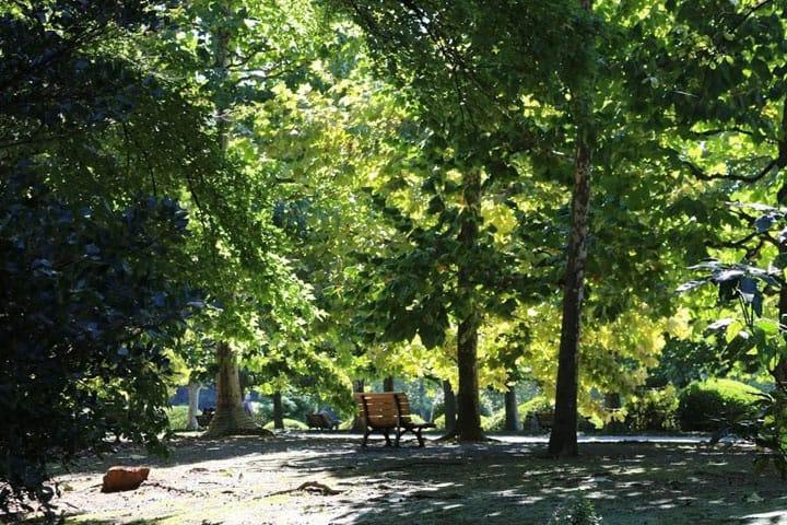 5 สวนแนะนำในโตเกียวที่คนรักสวนสาธารณะห้ามพลาด!   MATCHA  เว็บไซต์แม็กกาซีนแนะนำการท่องเที่ยวญี่ปุ่น