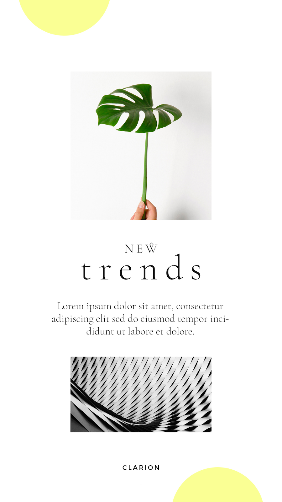 Graphics Eggs New Trends Instagram Stories Templates