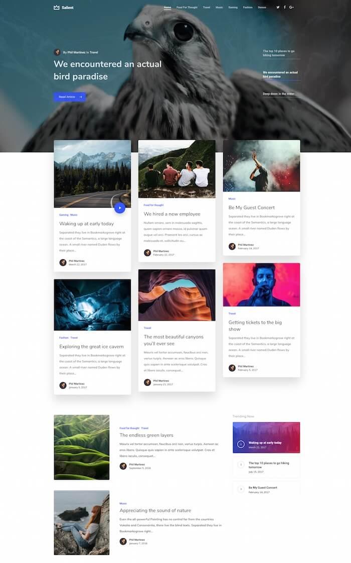 Salient Blogging Demo Design