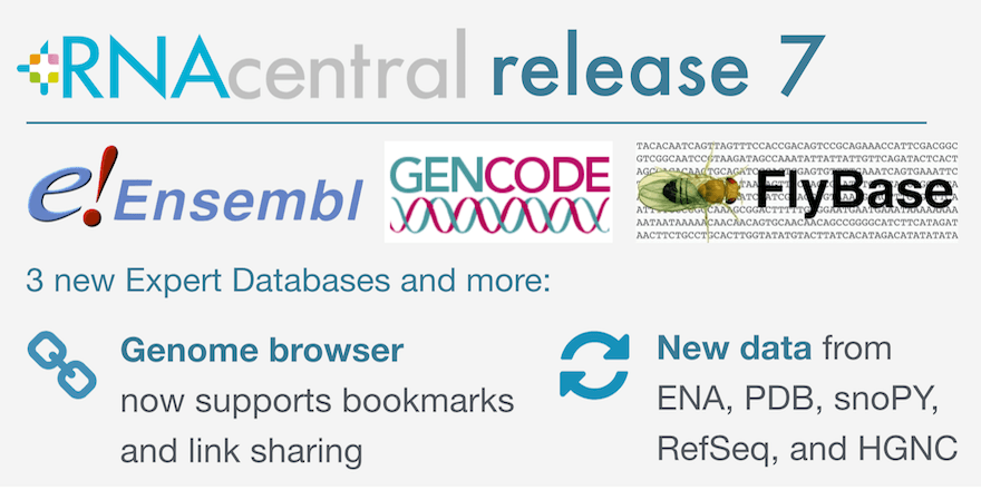 Overview of RNAcentral release 7