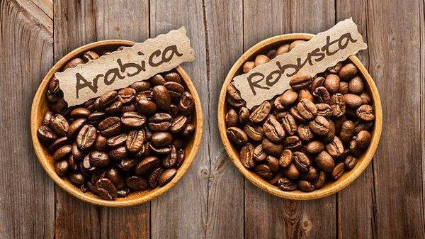 Cà phê arabica và cà phê robusta Motherland luôn đem đến cho bạn những điều thú vị