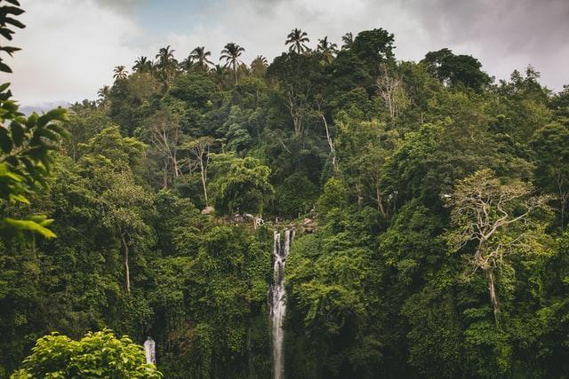 Best Time To Visit Sekumpul Waterfalls