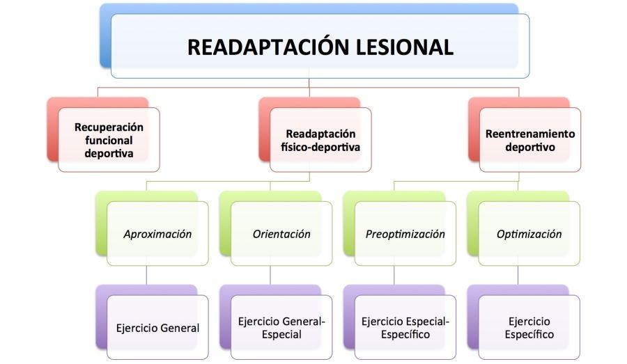 Planificación readaptación lesiones
