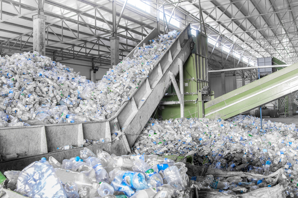 Plant containing Plastic waste