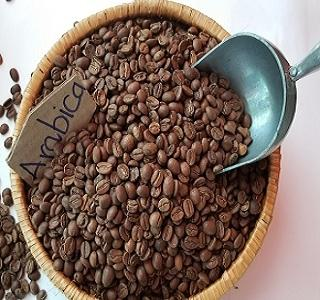 Image result for cà phê arabica