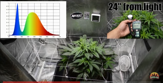 grow cage - light spectrum - different light at different stages