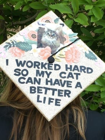"""A graduation cap that reads """"I worked hard so my cat can have a better life."""""""