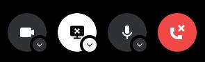 In call screen share settings