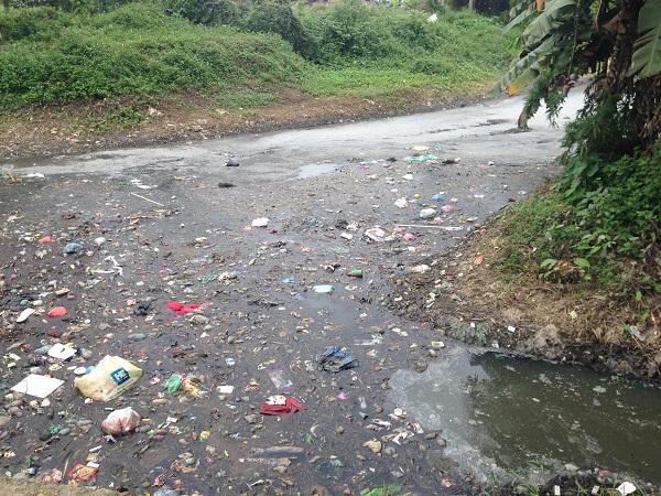 có những giải pháp từng bước khắc phục tình trạng ô nhiễm môi trường nghiêm trọng tại kênh T2