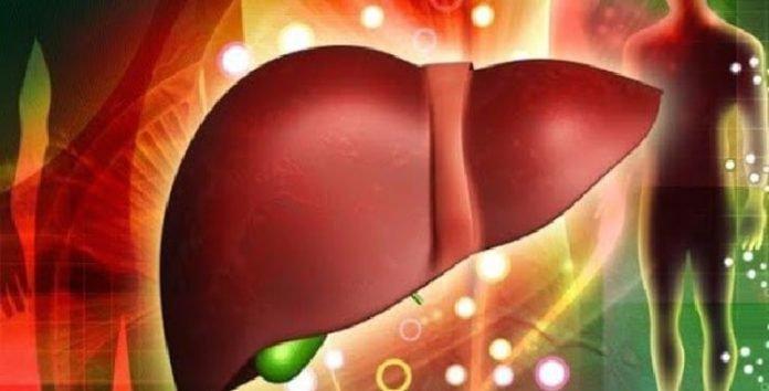 Viêm gan tự miễn do hệ thống miễn dịch hoạt động quá mức