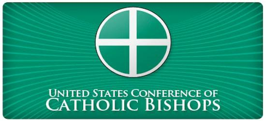 Image result for usccb logo for teens