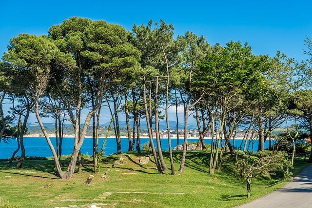 Playa de la Magdalena: Mejores lugares de Santander