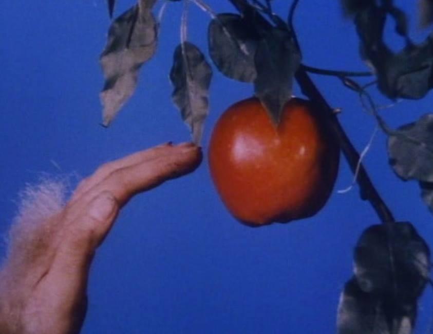 Seven Women, Seven Sins – segmento Gula (1986) de Helke Sander