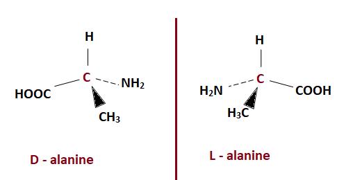 optical isomers of alanine
