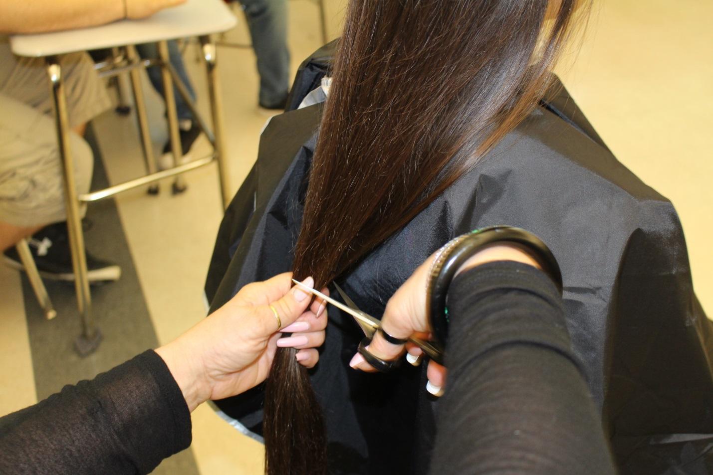 F:\Hair Pics\IMG_0180.jpg