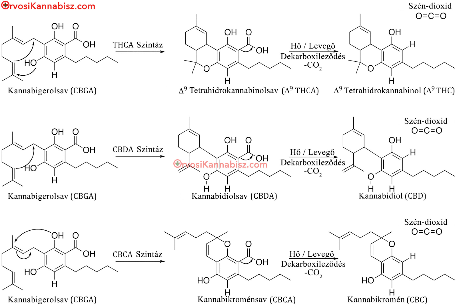 synthesis of THC, CBG and more