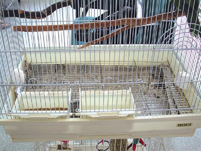 Cage with natural perches