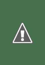 Watch Meatballs Online Free in HD