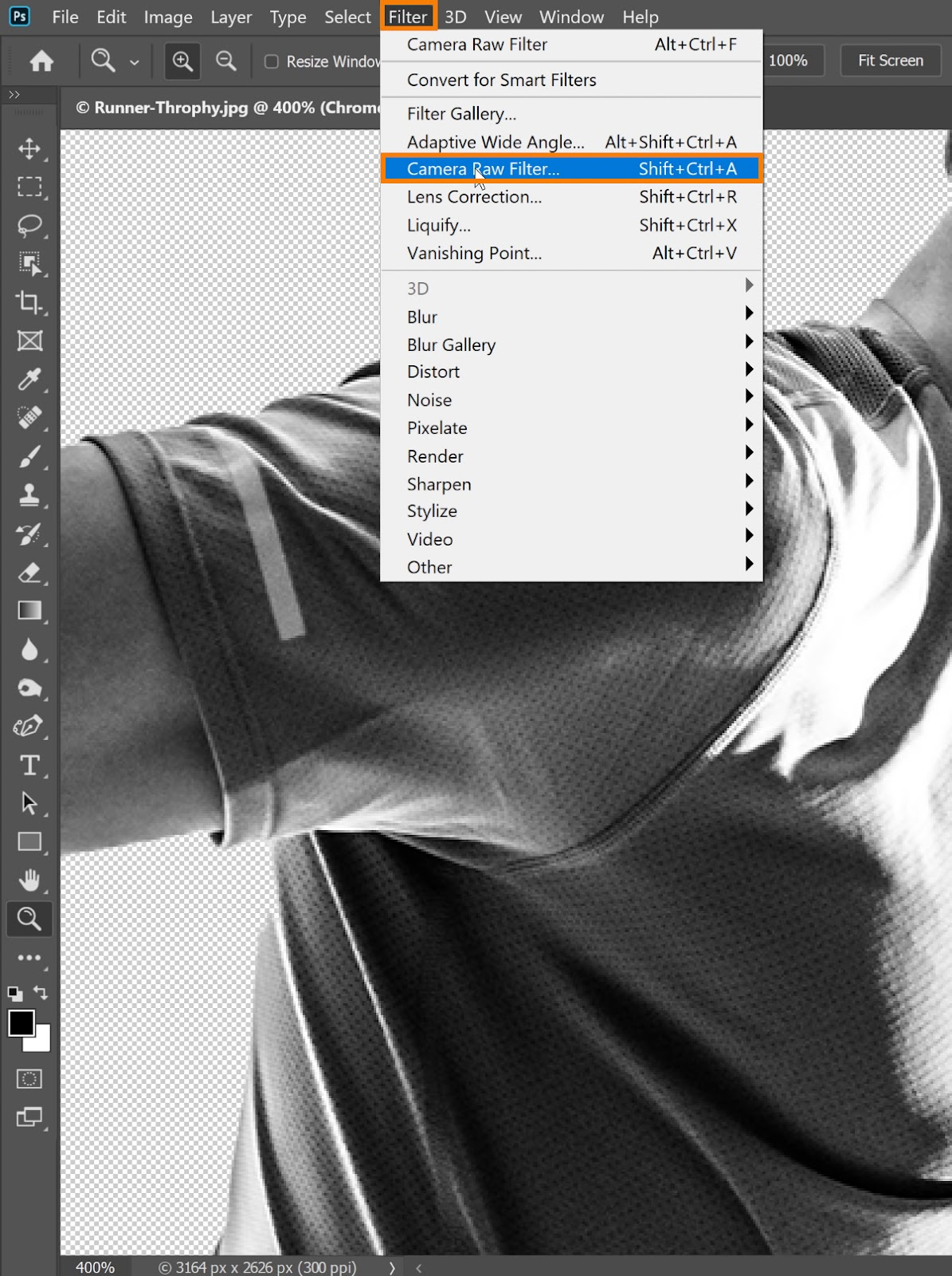 Choose Filter > Camera Raw Filter