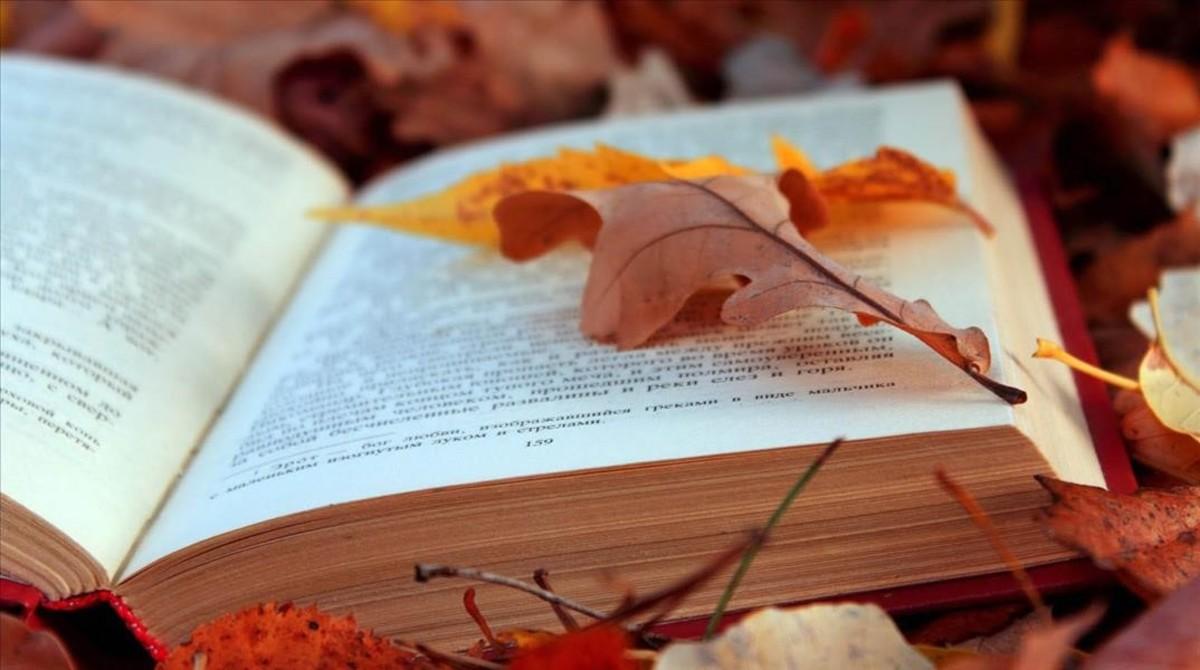 Nueva estación: otoño.