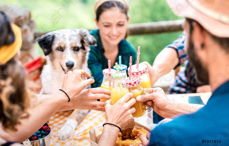 Amigos felices tostadas jugo de naranja saludable en picnic campestre -  foto de stock   Crushpixel