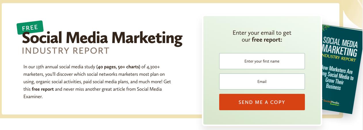 B2B Demand Generation Strategy: Email Marketing - Social Media Examiner Example