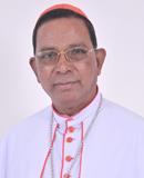 D:\Photo 135 (Telesphore P Cardinal Toppo).png