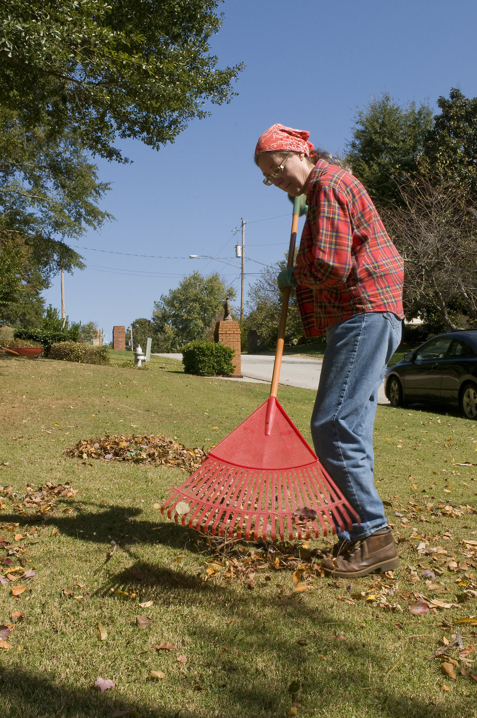 http://res.freestockphotos.biz/pictures/15/15247-a-woman-raking-leaves-on-her-lawn-pv.jpg