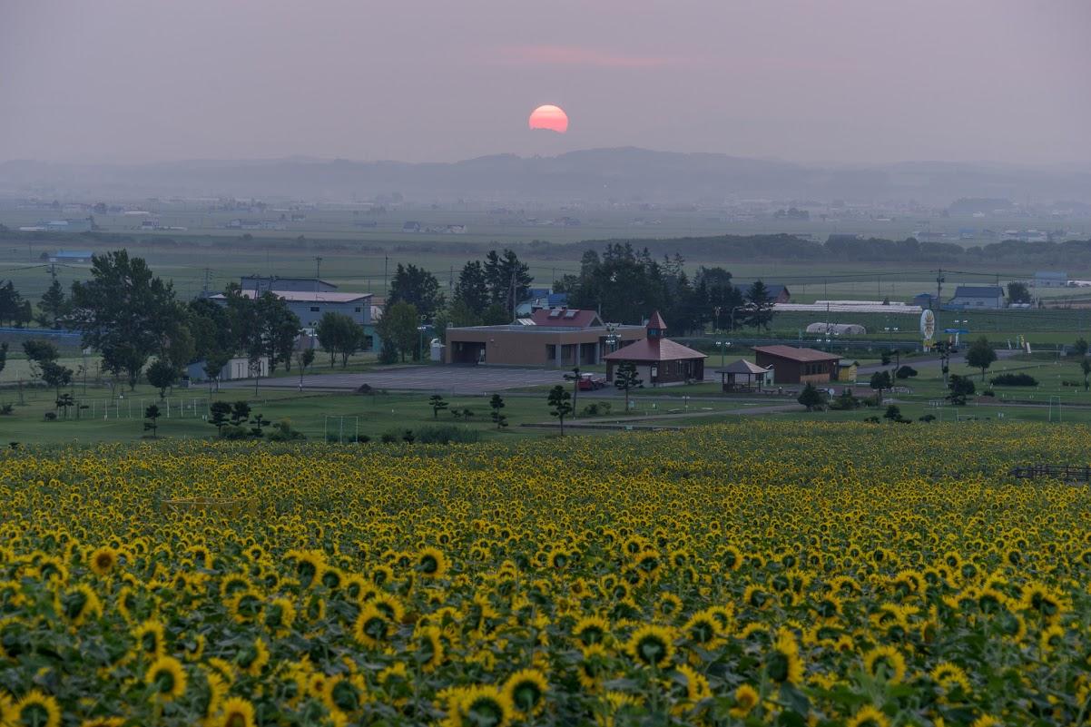 次第に円形を成していく朝陽